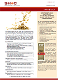 Abbildung Cover Infobrief Februar 2017 - SH+C Wirtschaftsprüfer, Steuerberater München