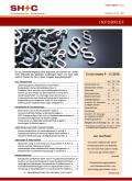 Abbildung Cover Infobrief September 2018 - SH+C Wirtschaftsprüfer, Steuerberater München